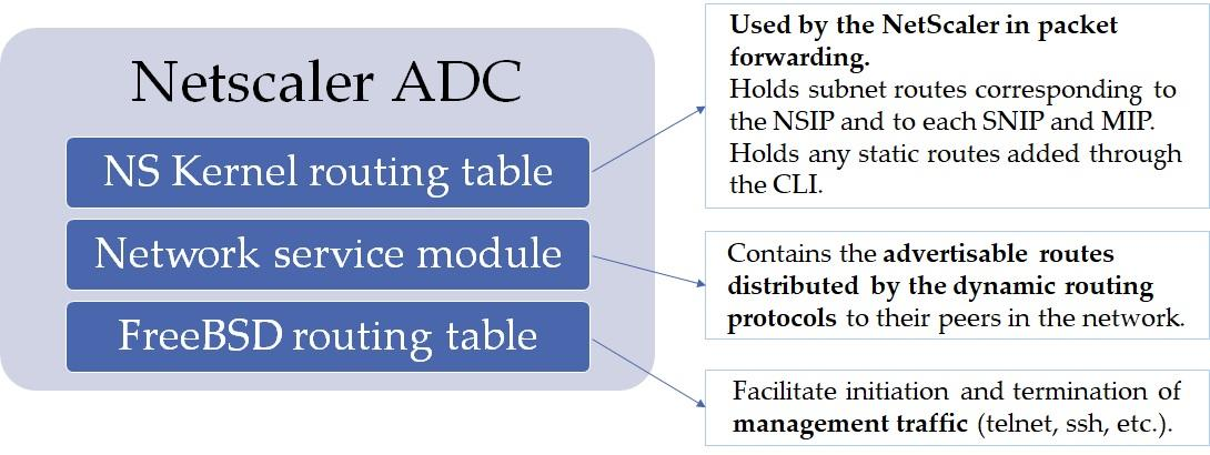 Citrix ADC routing tables